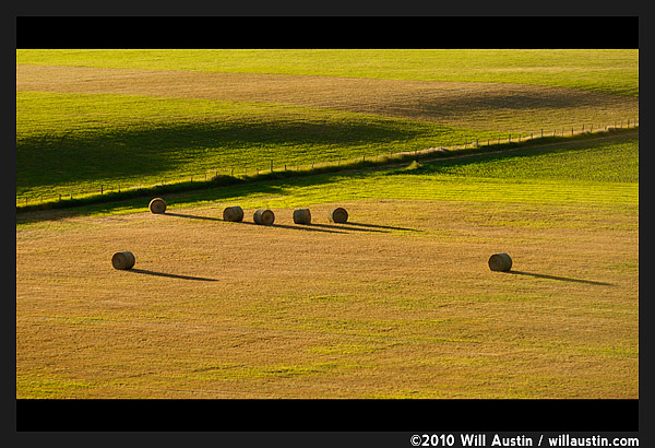 Rolled hay bales in the Methow Valley, Twisp, WA