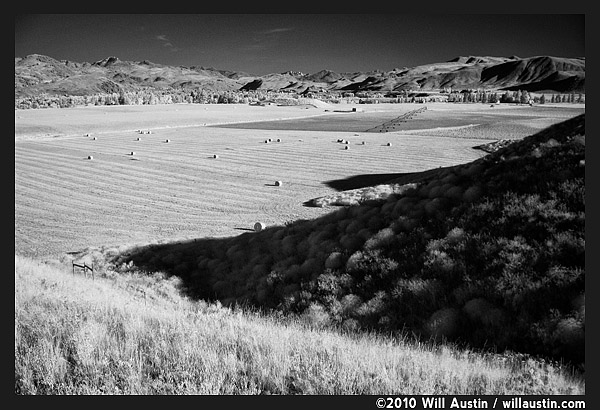 Black and white image of hay fields in the Methow Valley near Twisp, WA
