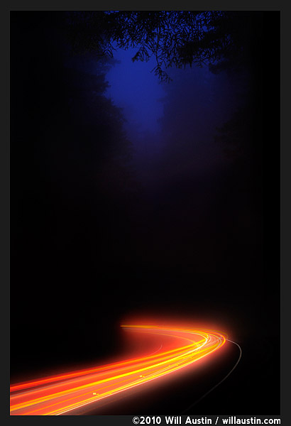 California Redwoods highway 101