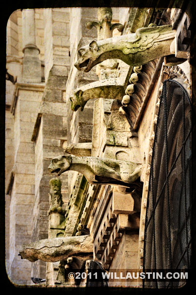 Gargoyles at the Notre Dame Cathedral, Paris France