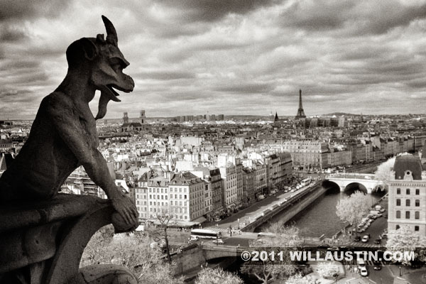 Gargoyle with Eiffel Tower in distance, Notre Dame Cathedral, Paris
