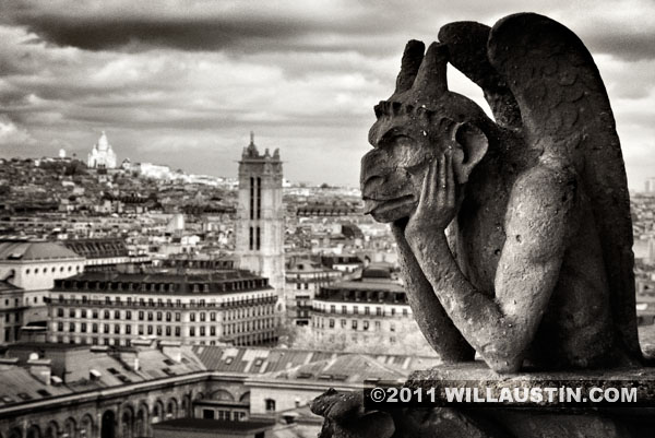 Gargoyle with Sacre Coeur in the distance, Notre Dame Cathedral, Paris