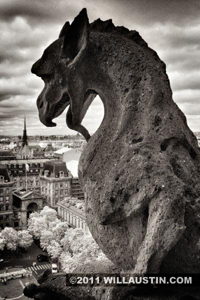 Gargoyle, Notre Dame Cathedral, Paris