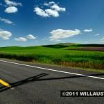 Road and wheat field near Moscow, Idaho